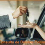 Consulta de Débitos de Veículos Online